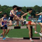 日本学生個人選手権 陸上 2019  概要 ( 歴代記録 、 標準記録 、開催日程 、 コース 等)